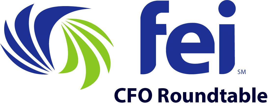 FEI-MSN-Logo